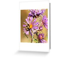 Bumble Bee Bumble Bee Greeting Card