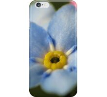 Forget-Me-Nots 12 iPhone Case/Skin