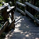 Steps To The Shore by phil decocco