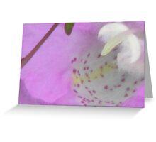 Purple Gerardia Beauty Greeting Card