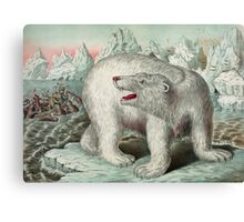 Vintage Polar Bear Illustration Canvas Print