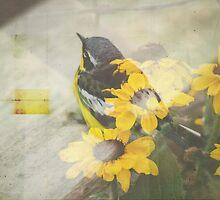 Nesting by Bethany Helzer