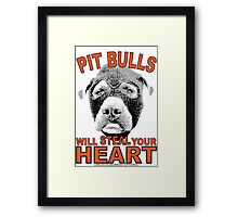 PIT BULLS WILL STEAL YOUR HEART Framed Print