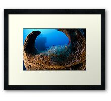 a trawler that was sunk for the purpose of becoming an artificial reef  Framed Print