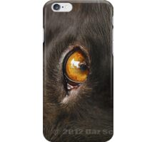 Dog's Eye View iPhone Case/Skin