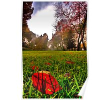 Red Leaf Under The Hot Autumn Sun  Poster