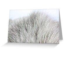 Dune Grass like Fur Greeting Card