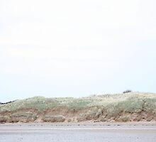 Dunes Like Walls by moknophoto