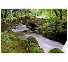 Kilfane Glen & Waterfall Poster