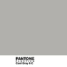 Pantone Plastica Cool Gray 6 C iPhone case by Plastica Tees