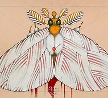 bride moth by federico cortese