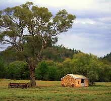 Old Wilpena Homestead Stables by bekyimage
