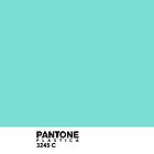 Pantone Plastica 3245 C iPhone case by Plastica Tees
