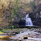 Cauldron Falls, West Burton, Bishopdale, Yorkshire Dales by Trevor Kersley