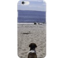 Looking at the big pond iPhone Case/Skin