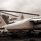 Old Airplane by Tatiana Ivchenkova