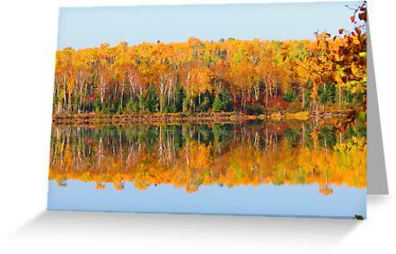 Fall , Island lake, Ontario by Alex Call