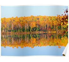 Fall , Island lake, Ontario Poster