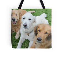 Ruby Todd and Troy Tote Bag