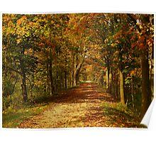 Autumn transformation Poster