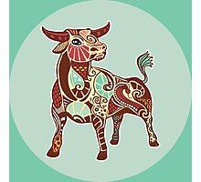 The Bull of Taurus Photographic Print