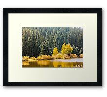 A touch of Fall... Framed Print