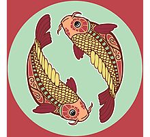The Fish of Pisces Photographic Print