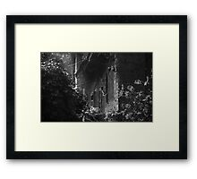 web & light. b&w Framed Print