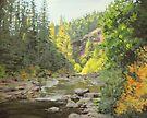 Changing Seasons by Karen Ilari