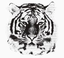 Black and White Tiger Face  by Nhan Ngo
