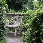 Garden -lizard viewing chair by JeffeeArt4u