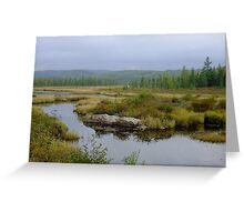 The Road to Openogo Lake, Algonquin Provincial Park- 6am Greeting Card
