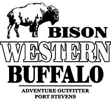 Western - Buffalo Photographic Print
