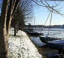 Boats and trees by Asrais