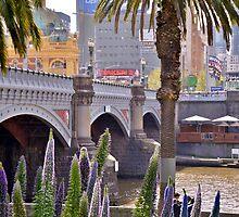Sturdy Bridge by domica48