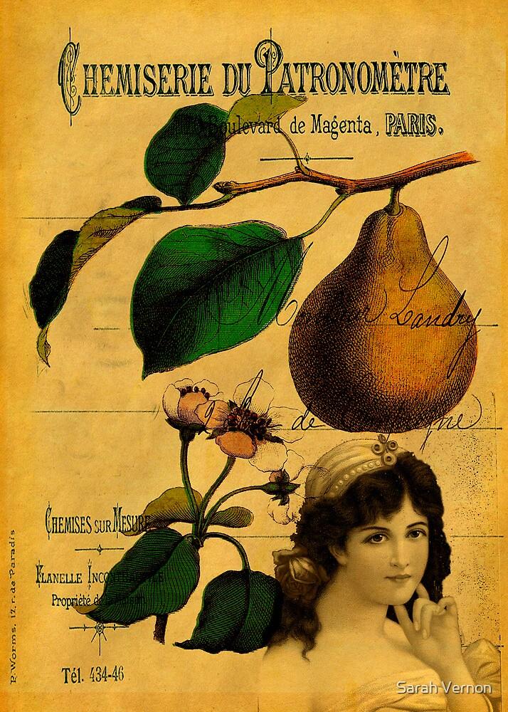 Botanical Fruit by Sarah Vernon