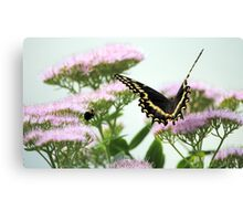 Sharing the Flowers Canvas Print