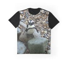 Hopping across the stones Graphic T-Shirt