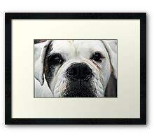 Hello there. Framed Print