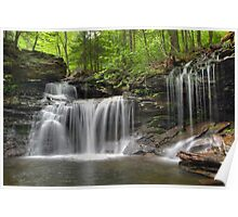 Unabstructed Spring View of R. B. Ricketts Falls (...from under the fallen tree) Poster