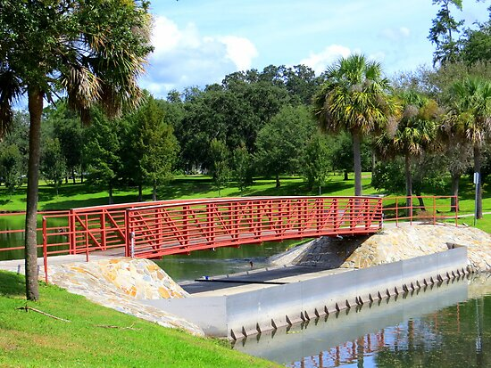 Footbridge In Tuscawilla Park by AuntDot