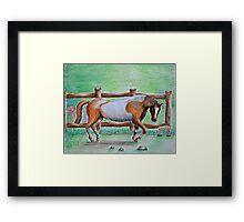 brown horse Framed Print