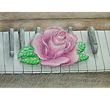 pink rose on piano Photographic Print
