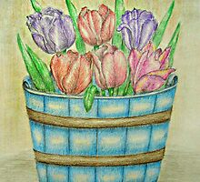 Tulips by thuraya o