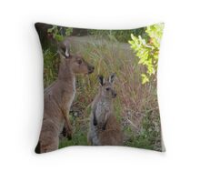 'TAKE A CLOSE LOOK JNR!' We don't go there. Adelaide Hills. Throw Pillow