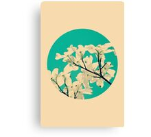 Dogwood Flowers - Circle Print Canvas Print