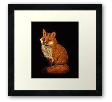 foxxy Framed Print