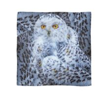 Designs Inspired By Nature: Snowy Owl Scarf