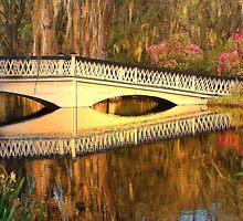 Bridge At Magnolia Plantation by Kathy Baccari