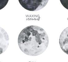 Lunar Phases Sticker